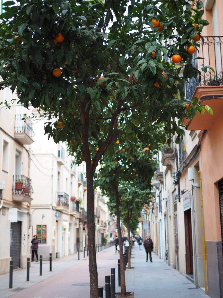 Barcelona-Tipps-Reiseguide-Travelblog-Poblenou